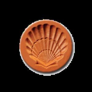1076 Seashell Cookie Stamp | CookieStamp.com